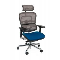 Fotel Biurowy Ergohuman Color