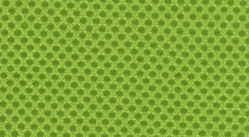 Zielony (PS9/Mesh)