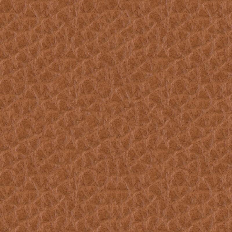 skóra licowa SD09